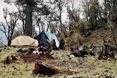 Nomadic yak herders