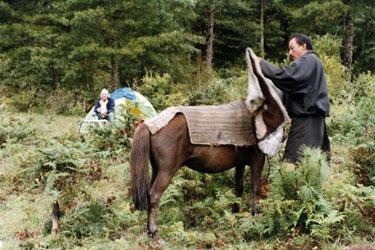 Horseman at campsite
