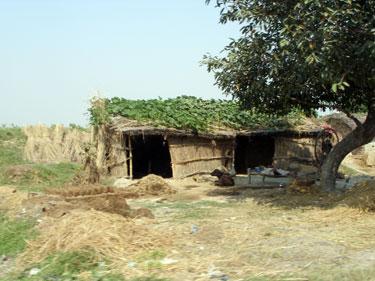 Rural dwelling