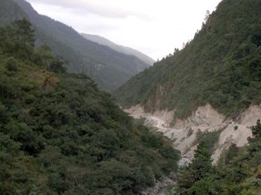 Road cut into hillside