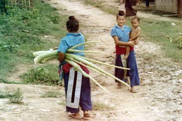 Hmong Minority People
