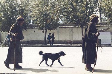 Pilgrims on the Lingkhor