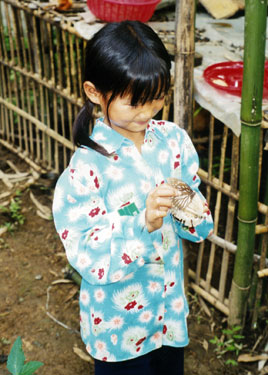 Little girl with large butterfly