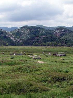 Rural graves